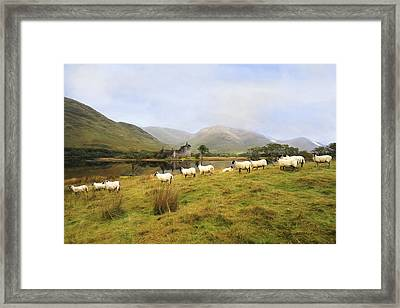 Framed Print featuring the photograph Morning At Kilchurn by Roy  McPeak