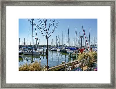 Morning At The Marina Framed Print