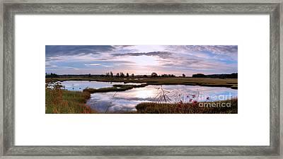 Morning At The Marsh Framed Print