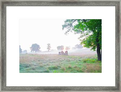Morning At The Philadelphia Cricket Club - Flourtown Pa Framed Print