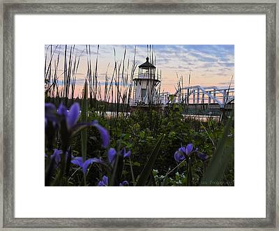 Morning Beauties Framed Print