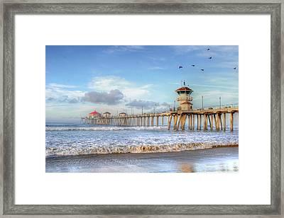 Morning Birds Over Pier Framed Print