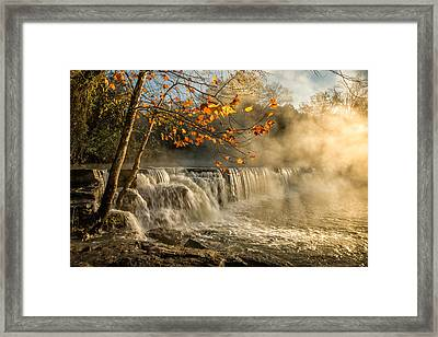 Morning Bliss Framed Print
