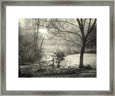 Morning Breaking Framed Print by Betsy Zimmerli