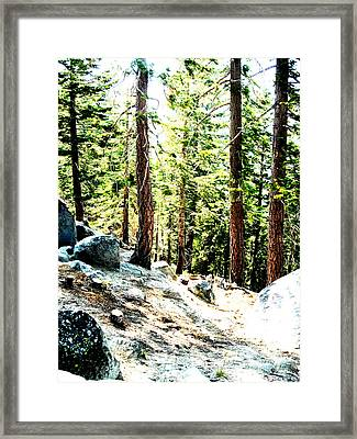 Morning Breaks Framed Print by Tim Tanis