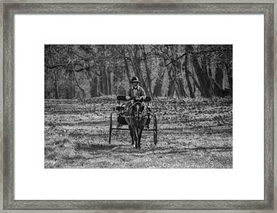 Morning Buggy Ride In Bluebell In Black And White Framed Print