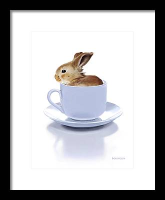 Small Animal Framed Prints