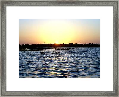 Morning Calls Framed Print