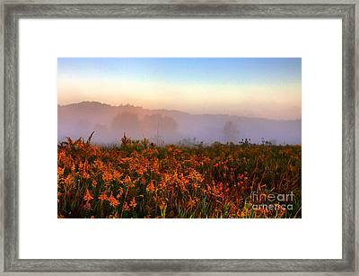 Morning Color-7 Framed Print by Robert Pearson