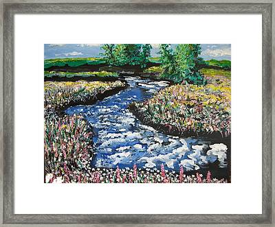 Morning Creekside Framed Print