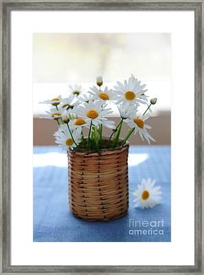 Morning Daisies Framed Print