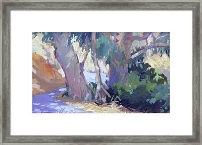 Morning Dance - Catalina Island Framed Print