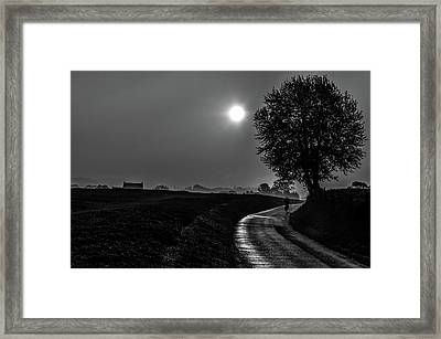 Morning Dew Bw Framed Print
