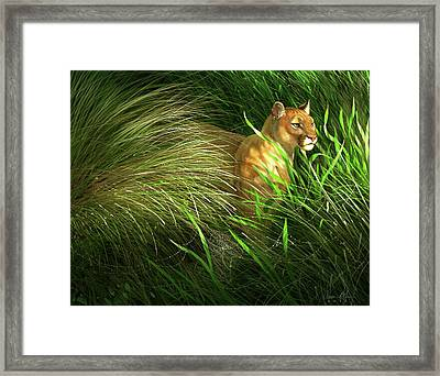 Morning Dew - Florida Panther Framed Print by Aaron Blaise