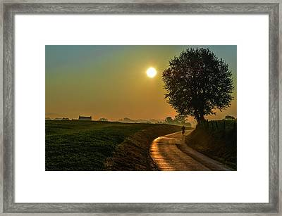Morning Dew In Color Framed Print