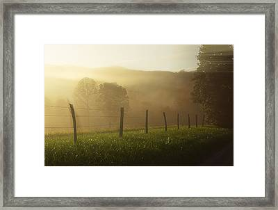 Morning Dew Framed Print by Jonas Wingfield