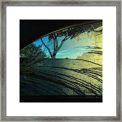 Morning Dew #juansilvaphotos Framed Print