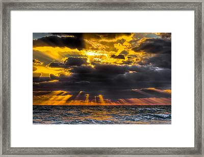 Morning Drama Framed Print