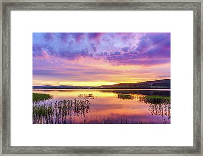 Framed Print featuring the photograph Morning Fire by Dmytro Korol