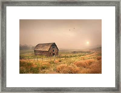 Framed Print featuring the photograph Morning Flight by John Poon