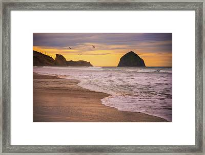 Framed Print featuring the photograph Morning Flight Over Cape Kiwanda by Darren White