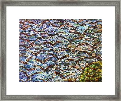 Morning Flight Framed Print by TB Schenck