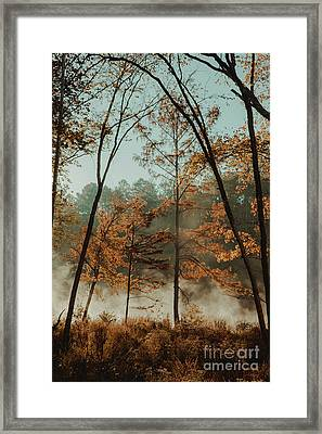 Framed Print featuring the photograph Morning Fog At The River by Iris Greenwell
