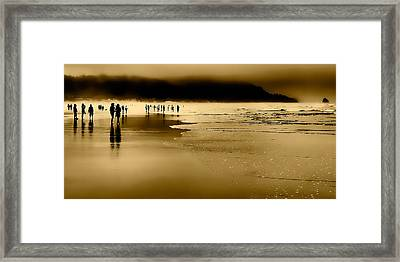 Morning Fog On Cannon Beach Framed Print by David Patterson
