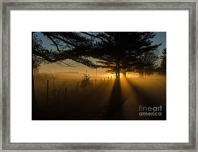 Morning Fog Framed Print by Paul Noble