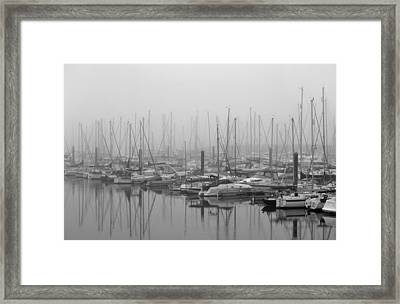 Morning Fog Framed Print by Terence Davis