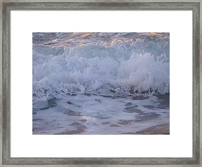 Morning Freshness Framed Print by E Luiza Picciano