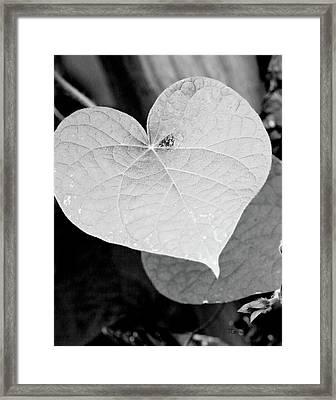 Morning Glory Heart Framed Print