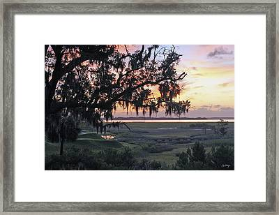 Morning Glory Framed Print by Phill Doherty