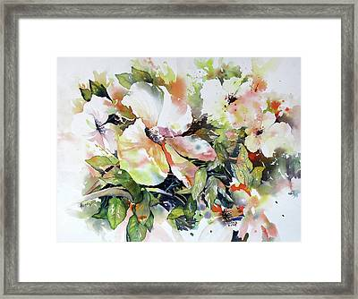 Morning Glow 2 Framed Print by Rae Andrews