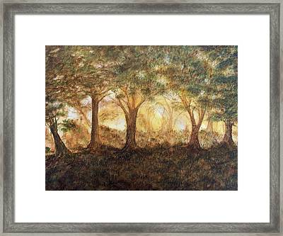 Morning Glow Framed Print by Jeanette Stewart
