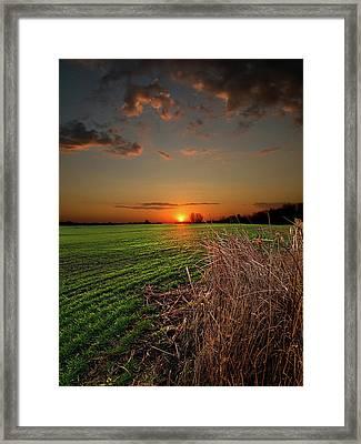 Morning Glow Framed Print by Phil Koch