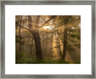 Morning God Rays Framed Print