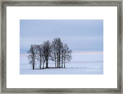 Morning Grace Framed Print