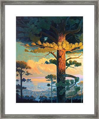Morning Harbor Framed Print by Robert Lewis