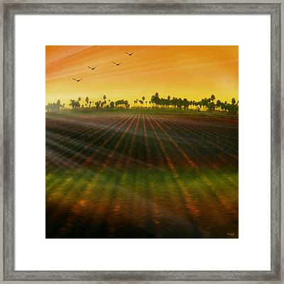Morning Has Broken Framed Print by Holly Kempe