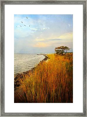Framed Print featuring the photograph Morning Has Broken by John Rivera