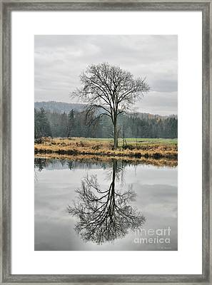 Morning Haze And Reflections Framed Print by Deborah Benoit