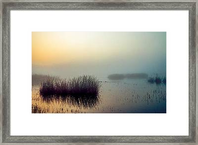 Morning Hues  Framed Print