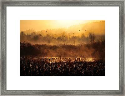 Morning Impression Framed Print