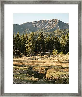 Morning In Janesville Framed Print