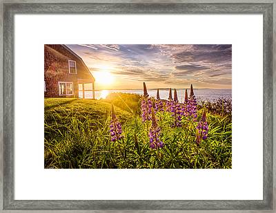 Morning In Maine Framed Print by Benjamin Williamson