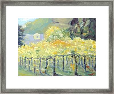 Morning In Napa Valley Framed Print by Barbara Anna Knauf