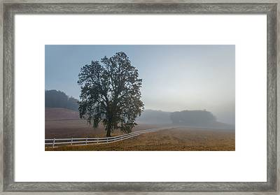 Morning In Paso Robles Framed Print by Joseph Smith