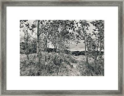 Framed Print featuring the photograph Morning In The Dunes by Michelle Calkins