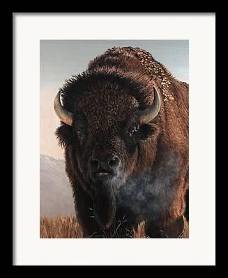 Frontier Framed Prints